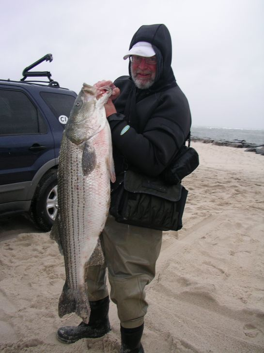 Striped bass fishing stripers striper fishing for Nor easter fishing
