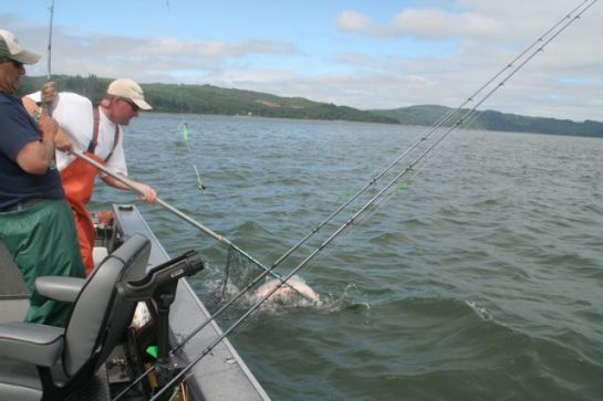 Ifish oregon fishing guides and charters in for Tillamook fishing report